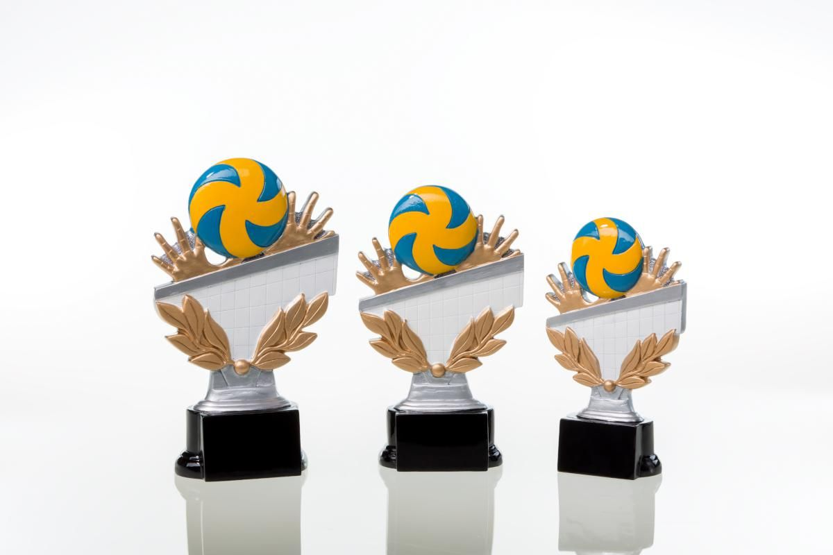 Volleyballpokal